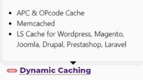 Dynamic caching by HostArmada