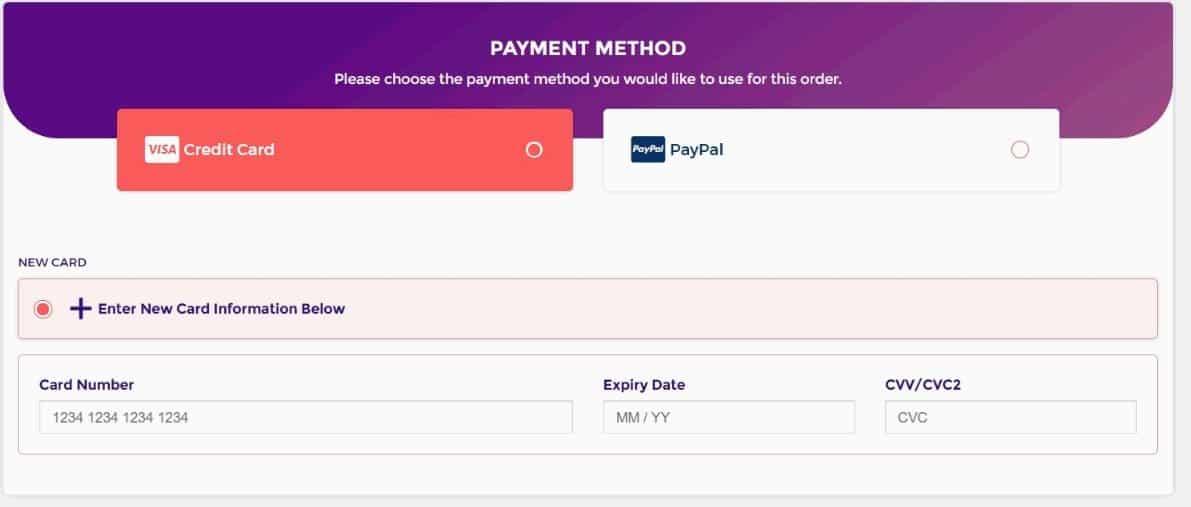 HostArmada Review Payment Method