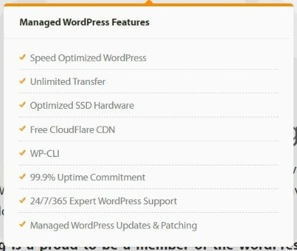 Managed Wordpress Feature
